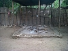 Institute Community of Anse-a-Pitres School outdoor-kitchen-republique-de-haiti-school
